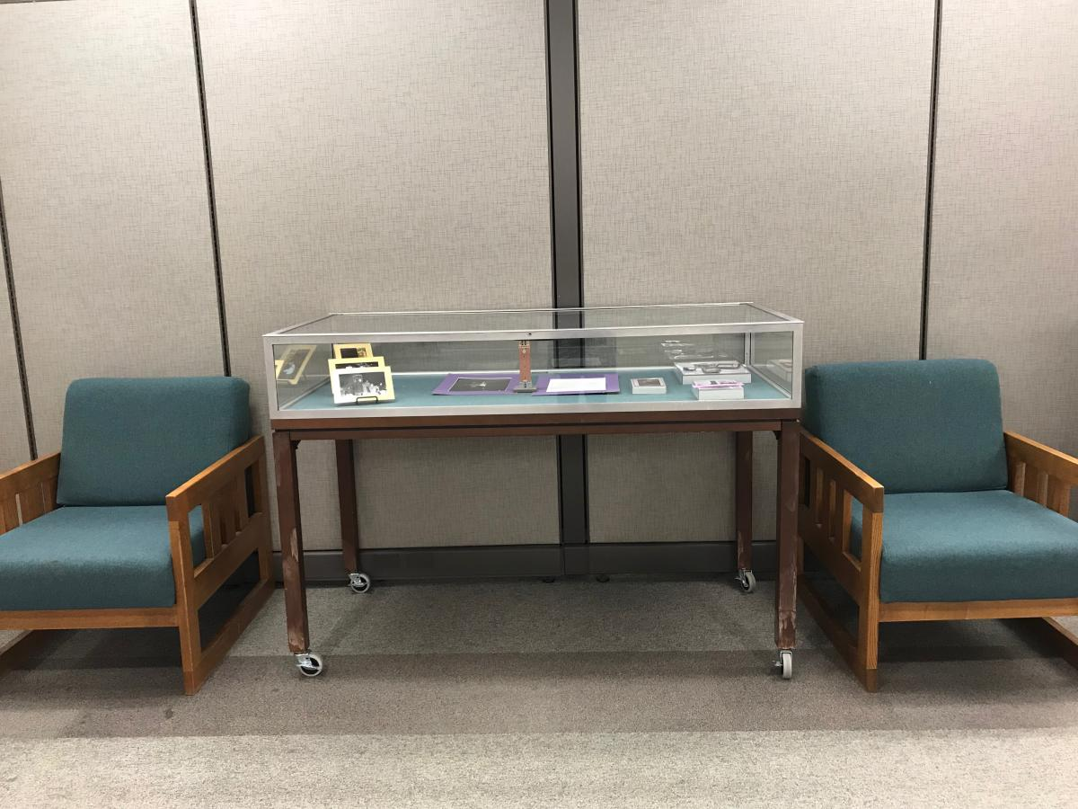 Learning Commons flat exhibit case